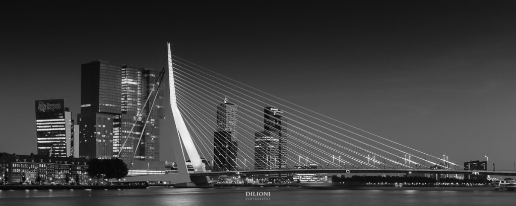 Erasmus bridge and south bank